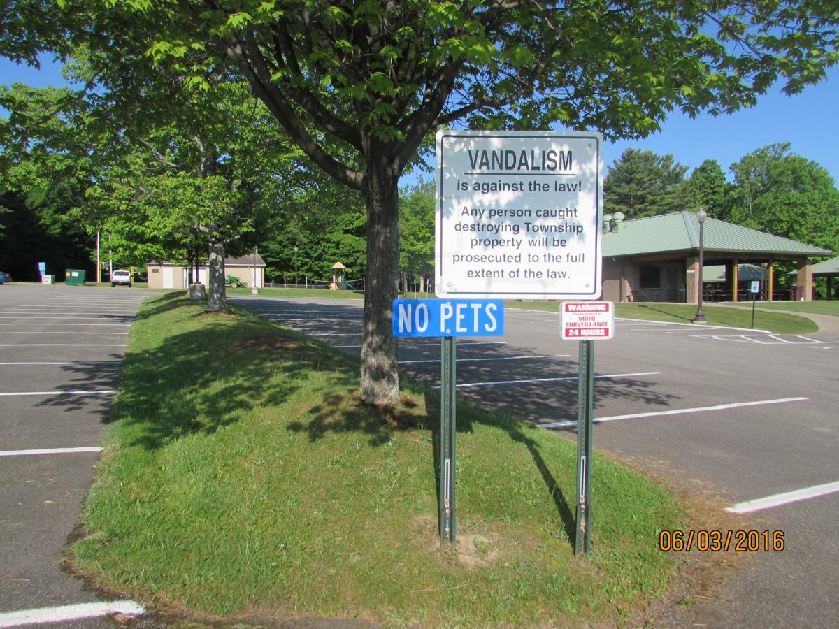 Picnicana parking lot 1